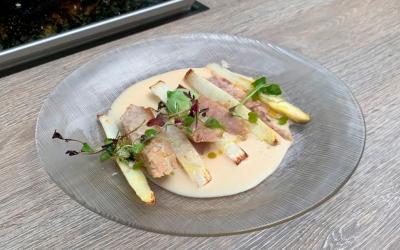 Recetas de espárragos de Navarra con ajoblanco y ventresca de atún